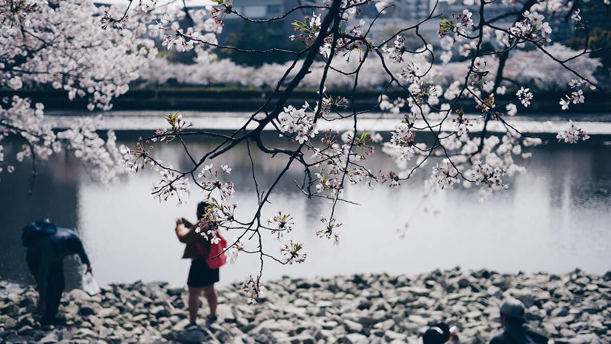 シングルマザーが関西で住みやすい市はどこ?